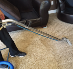 Carpet being professionaly cleaned by Servicemaster