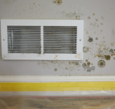 wall and vent with mold damage